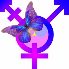 Yin-Yang-Yuan_BiggestWholeButterfly_TransGender-Symbol